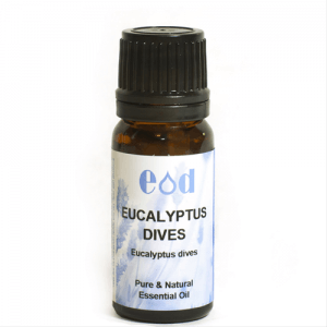 Big image of 10ml EUCALYPTUS DIVES Essential Oil