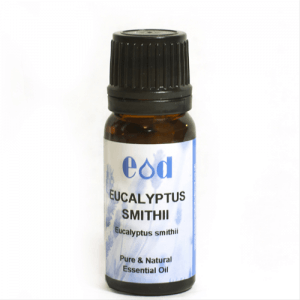 Big image of 10ml EUCALYPTUS SMITHII Essential Oil