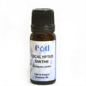 Big image of 10ml EUCALYPTUS SMITHII Essential Oil
