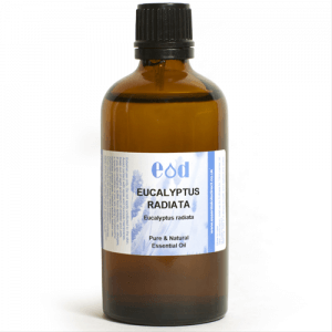 Big image of 100ml EUCALYPTUS RADIATA Essential Oil