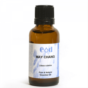 Big image of 30ml MAY CHANG Essential Oil