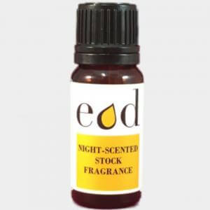 Large image of Night Scented Stock Fragrance Oil 10ml NIG10F